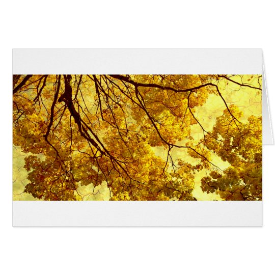 Mellow Autumn Card