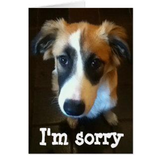 Melody, Im sorry Card