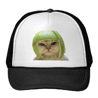 melon cat mesh hats