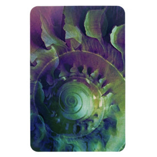 Melon Shell Abstract Magnet