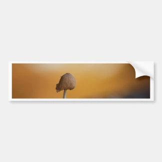 Melting mushroom bumper sticker