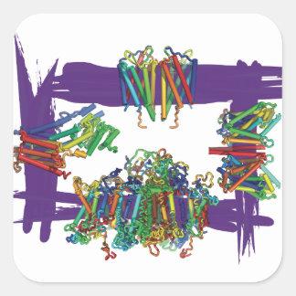 Membrane Proteins Through A Box Stickers