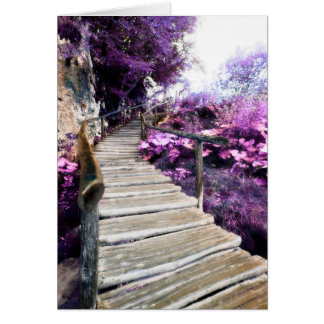 memorial card wisteria stairs