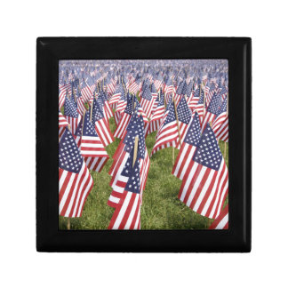 Memorial Day Flags Gift Box