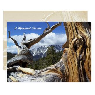 Memorial Service Invitation Mountain Thru Tree