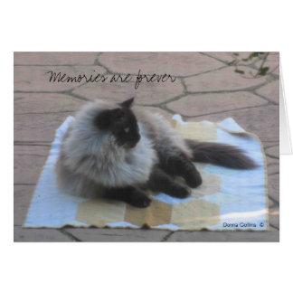 Memories cat note card