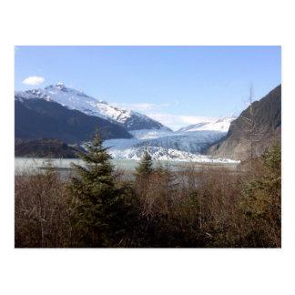 Mendenhall Glacier, Alaska Postcard