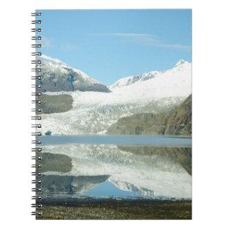 Mendenhall Glacier Notebook