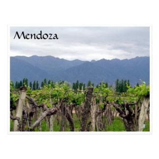 mendoza andes vines postcard