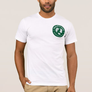 Men's American Apparel T-shirt