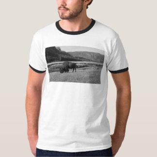 Men's Bison Ringer T-Shirt