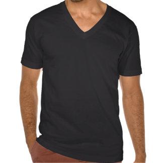 Men's Black Fravashi V-neck Tee Shirt