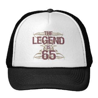 Men's Funny 65th Birthday Cap