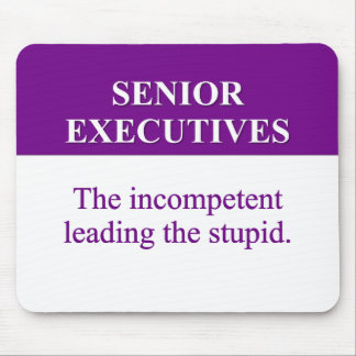 Mentoring Role of Senior Executives (2) Mouse Pads