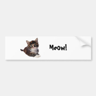 Meow! Bumper Sticker