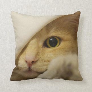 MEOW! Cat playing peekabo-PILLOW Cushion