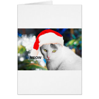 Meow Christmas Santa Hat Cat Card