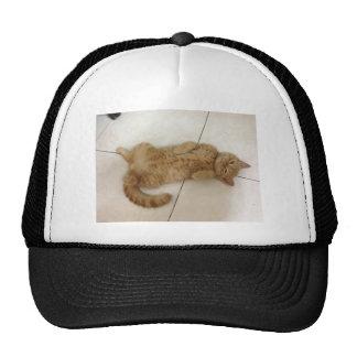 Meow Moments Cap