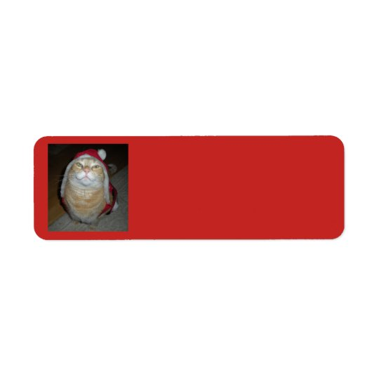 Meow-y Little Christmas Return Address Label