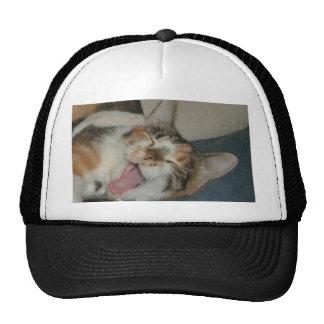 Meow Yawn Cap