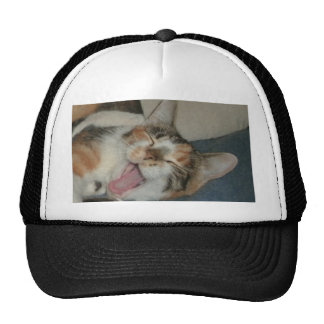 Meow Yawn Hat