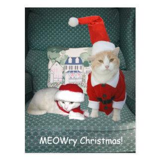 MEOWry Christmas! Postcard
