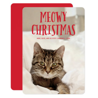 Meowy Christmas Cute Kitty Cat | Holiday Photo Card