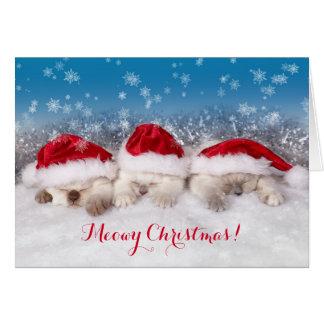 Meowy Christmas Sleeping Kittens Card