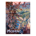 Merano Italy Vintage Italian Travel Poster Post Cards