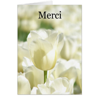 Merci - Thank you in French with White tulips Card