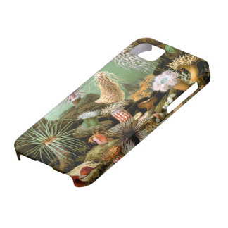Merculiano Sea Anemones iPhone 5 Barely There Case