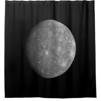 Mercury Shower Curtain
