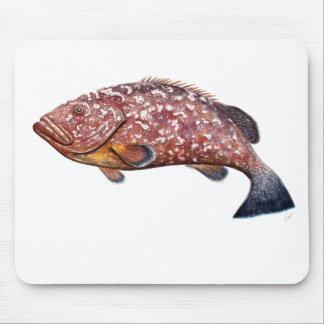 Mere, fish garopa, chernia mouse pad