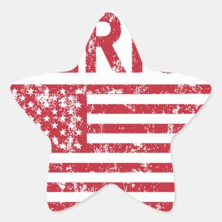 Merica Flag Star Sticker