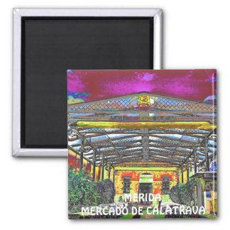 MERIDA - Market of Calatrava & Casa Benito Square Magnet