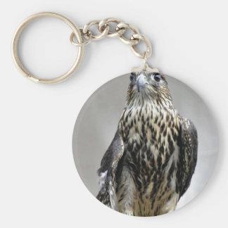 Merlin Key Ring