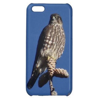Merlin phone case iPhone 5C case