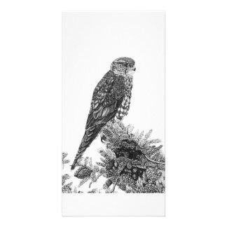 Merlin - Photo Card