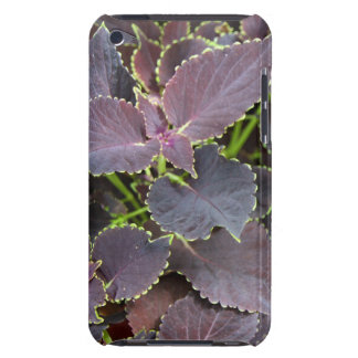 Merlot Coleus Case-Mate iPod Touch Barely There iPod Covers