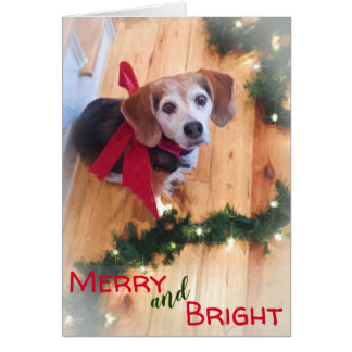Merry and Bright Beagle Dog Red Bow Christmas Card