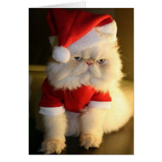 Merry CatMas Greeting Card