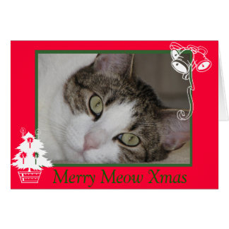 Merry Cat's Meow Christmas Card