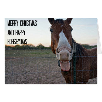 Merry Christmas and Happy Horseydays Card
