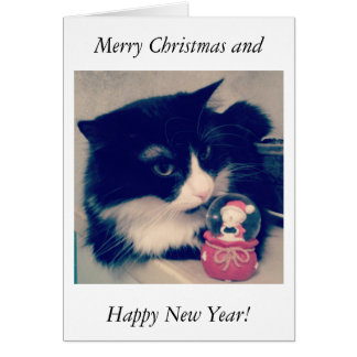 Merry Christmas and  Happy New Year! Card