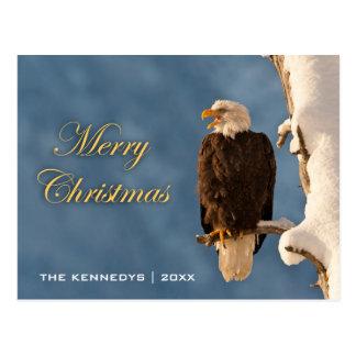 Merry Christmas - Bald eagle perched on - Alaska Postcard