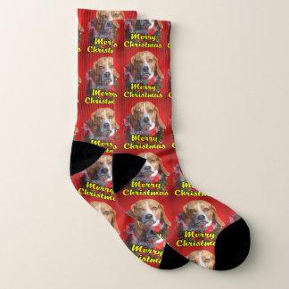 Merry Christmas Beagle Socks