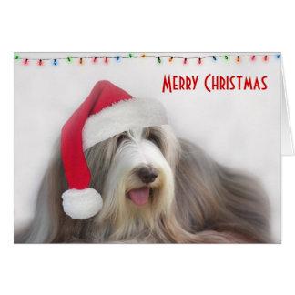 Merry Christmas Bearded Collie Card