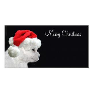 Merry Christmas Bichon Frise Customized Photo Card