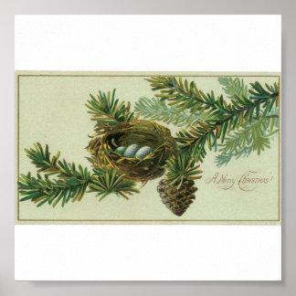 Merry Christmas Bird Eggs Poster