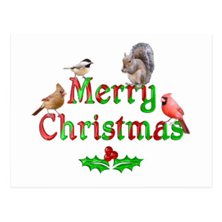 Merry Christmas Birds and Squirrel Postcard